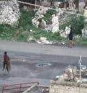 مقتل وجرح العديد من المرتزقة أثناء محاولتهم التقدم في الضباب بتعز